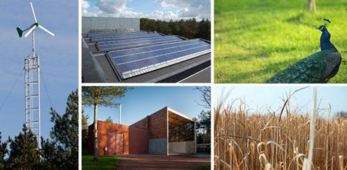 dimension énergétique et environnementale